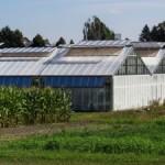 Systemy zwiększające wydajność hodowli roślin